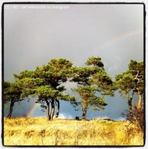 en skatt vid regnbågens slut