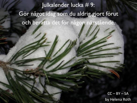 Julkalender9