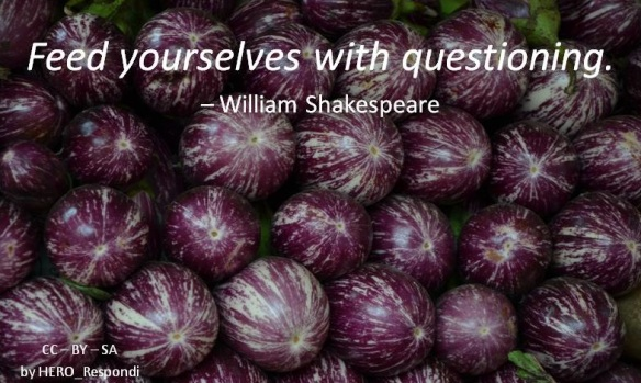 Questioning Shakespeare