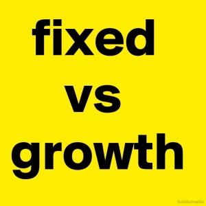 BoldomaticPost_fixed-vs-growth
